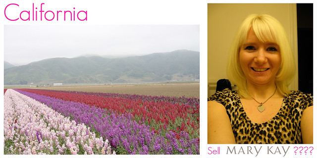 california flowers and me