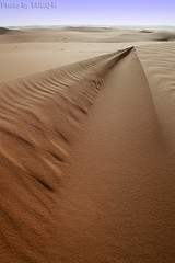 The Sand (TARIQ-M) Tags: texture landscape sand waves desert dunes saudiarabia  canonefs1855      canon400d