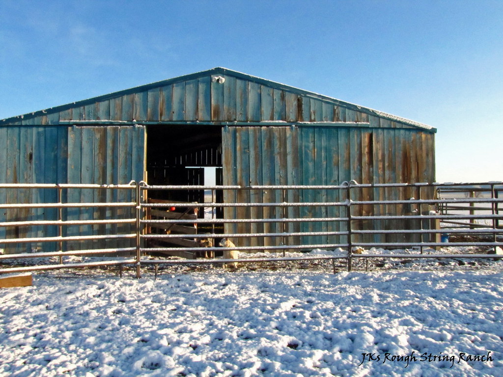 Round Pen: North