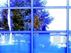 reflet solo (alainalele) Tags: camera france les digital photoshop french toy cit north internet creative commons east nancy council housing bienvenue et lorraine 54 nouvelle ville hlm licence banlieue moselle presse bloggeur vandoeuvre meurthe chru paternit alainalele lamauvida