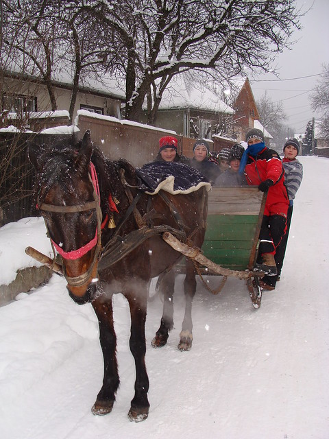 Boys on horse drawn sled
