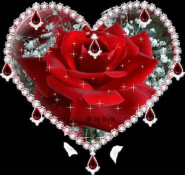 Srce- slike - Page 9 5634064270_b84d51800c
