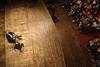 38_Ludovica Galeazzi 5 (International Journalism Festival) Tags: premier silvioberlusconi politica intercettazioni fatti marcotravaglio telefonate tommasotessarolo cartabianca currentitalia ilfattoquotidiano ijf11