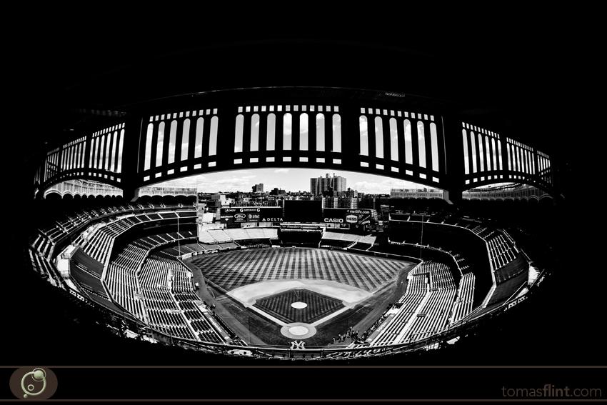 Tomas_Flint-NY_Yankees2