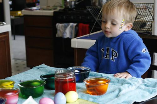 eggs016PatientO