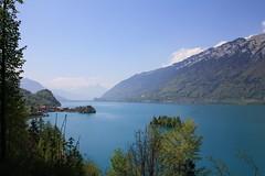 Brienzersee (renalt130) Tags: lake mountains switzerland meer brienzersee bergen berneroberland