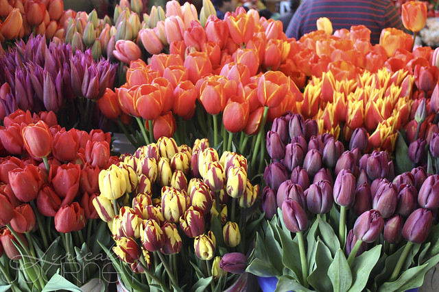Pike's Place Flowers