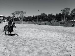 Dayboro Rodeo (Natashatashtash) Tags: horse cowboy rodeo chaps brisbanemeetup daybororodeo2011
