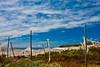 North & West coast (potomo) Tags: ocean travel winter holiday canon island spain europe greenhouse tenerife canary discovery teneriffe adeje eos5d guiadeisora michelesolmi vojyage