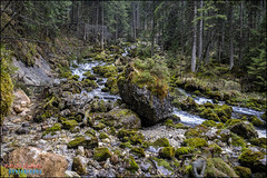 alps, kuchl (hakoar) Tags: life portrait mountain alps nature wet water beautiful creek forest river germany de landscape bavaria austria waterfall moss rocks colorful stream pattern view angle wildlife country hill perspective scenic rocky fussen kuchl