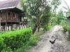 IMG_1377 (PeterS) Tags: indonesia asia sulawesi baranti canadaworldyouthreunion