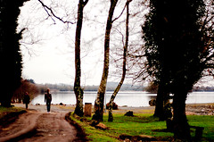 Forlorn (Mindful Youth) Tags: wood trees ireland irish lake cold reflection landscape foreboding logs overcast calm hills clear cavan dull shimmer forlorn muted thehollow hoizon drumlins nikond90 mountnugent loughsheelin croverhousehotelgolfclub
