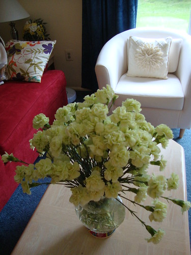 green carnations from my mom
