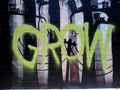 SNACKI 'Grow More' (billy craven) Tags: chicago graffiti snax kwt 2nr snacki