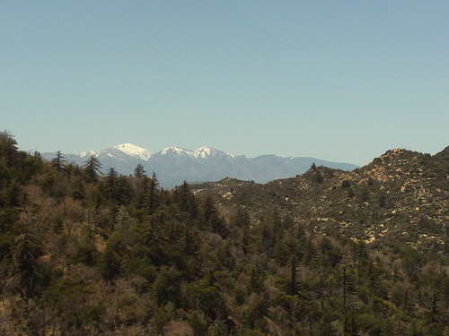 Snow On Mount Baldy-1