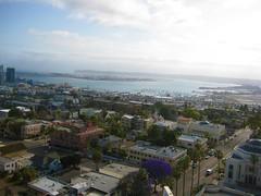 San Diego Skyline (Anna Sunny Day) Tags: sandiegoskyline downtownsandiego mras 12thfloorview