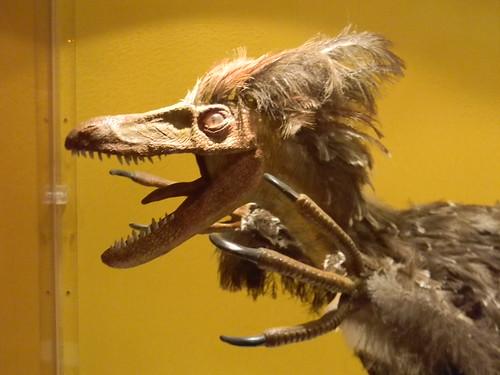 y si los velocirraptors... by Carlos Navarro C.