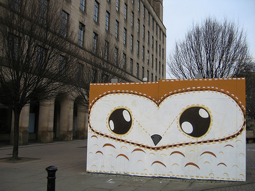 matt-sewell-brown-owl1