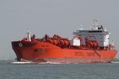 Bow Star (angelo vlassenrood) Tags: canon boot eos star is ship nederland vessel bow 7d usm tanker schip westerschelde ef100400 walsoorden
