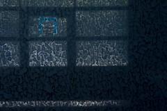 Where do you go! (raumoberbayern) Tags: blue abstract broken window glass pattern fenster oberbayern camouflage blau halle muster glas wasserburg industrialarea robbbilder scherben tarnung wellblech industriegebiet