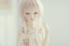 summer days i (c a r o l i n e*) Tags: doll dress bjd fairyland mnf shushu pinkcocktail leekeworld minifee icantdance