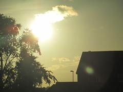 Who said don't shoot into the sun  274/366 (Ians366) Tags: intothesun light sun 366