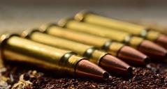 HMR17 cartridges on a bed of  tea (tonny_christensen) Tags: macromonday inarow teapartymovement hypocritical censorship sigma nikon firearms nonudety cartridge nipplegate macrounlimited
