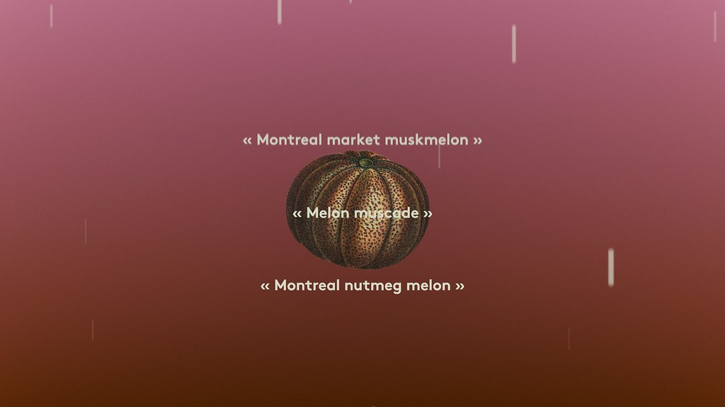 rim research in motion finance paper Finance research in motion blackberry limited wikipedia, blackberry limited is a canadian multinational company specializing in enterprise software and the internet.