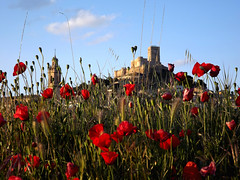 Castle with Flowers (Photography and Managment) Tags: flower castle castillo amapolas