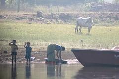 Laundry in the Kabini River (LaylaLee) Tags: park india national gandhi karnataka rajiv
