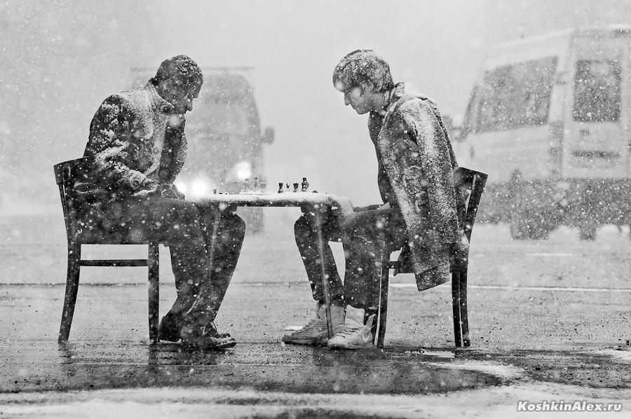 Шахматы под снегом 2580