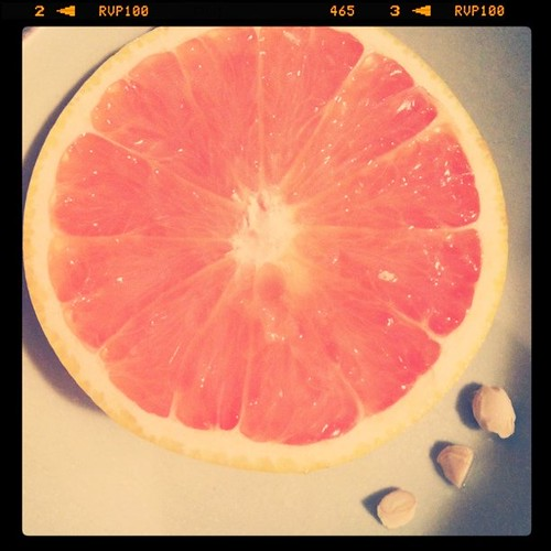 [93/365] Grapefruit