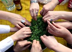 ...  (Shahireh) Tags: green hand haftsin 7sin persiannewyear haftseen  sabzeh      13 iranianneyyear 1390 2011