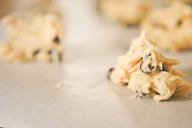 baking cookies {95/365}
