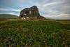 Mammoth Rock (TimesTheyAreAChanging) Tags: california county iris wild spring sonoma trail mammoth jenner shellbeach goatrock mammothrock