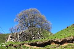 In a blue sky... (claudio.santucci) Tags: primavera estate cielo aprile sole azzurro monti rifugio caldo pescaglia rifugiomatanna