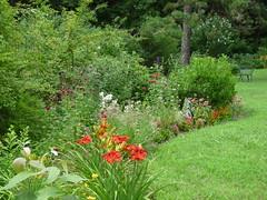 Last summer's garden (lovesdahlias 1) Tags: flowers summer nature gardens