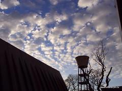 Amanhecer no C.E.U. Jaguaré - foto 01
