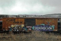 Freight Bums Lords (A & P Bench) Tags: car train bench graffiti pacific stock canadian graff railfan freight rolling rollingstock fr8 benching