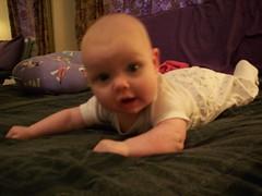Morgana 3 Months