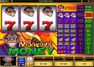 Monkey's Money slot game online review