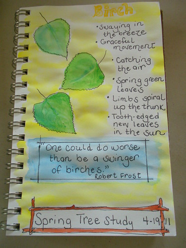 Birch Nature Journal