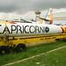 Cohete Capricornio