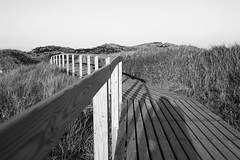 boardwalk-self (nattens) Tags: leica beach strand self dune m8 selbst dhne