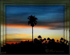 Sweet Agony !! (Mariavica17-) Tags: sunset twilight picnik anocheciendo atardeciendo finaldeldia theand sweetagony