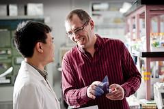 Le professseur Patrick Labonté, du Centre INRS-Institut Armand-Frappier, et un membre de son équipe de recherche