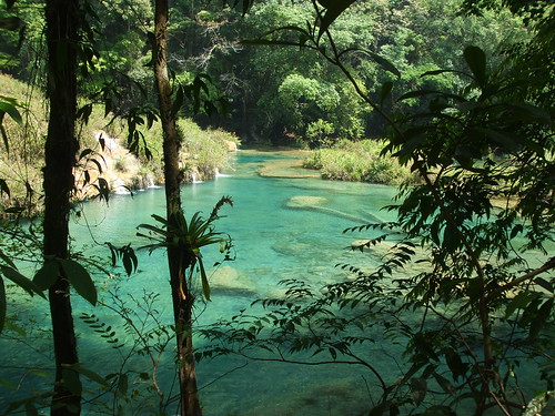Guatemalan natural pool and forest