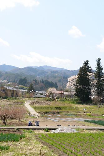 Nagano in Spring