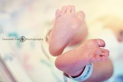 She Has Her Mad Feet On (Chaos&BlissPhotography) Tags: feet bokeh newborn babyfeet smoothbokeh