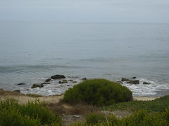 DSC01670 (castle_adams) Tags: cove hike abalone verdes palos rancho